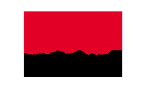 Deutsche Migräne- und Kopfschmerzgesellschaft